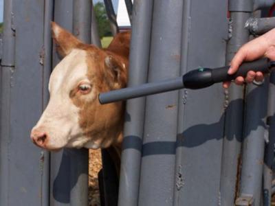 Cattle RFID Stick Reader